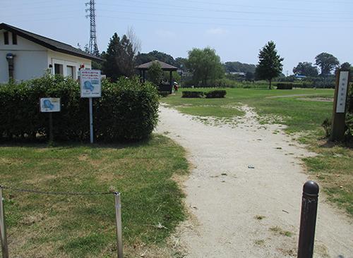 高須賀池公園イメージ